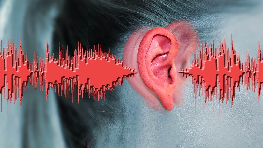 Výsledek obrázku pro FOTO Southamptonské univerzitě vědu o ultrazvuku a akustice pod vodní hladinou