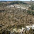 Následky orkánu Kyrill v Severním Porýní-Vestfálsku (leden 2007)