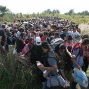 Uprchlíci na srbsko-maďarské hranici