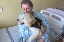 Senioři v nemocnici se na psí společnost těší