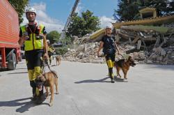 Záchranáři se psy ve městě Amatrice