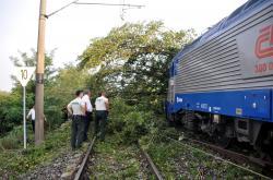 U hranic narazil vlak do stromu