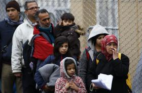 Migranti na rakousko-slovinské hranici (únor 2016)