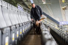 Policejní pes prohledání hlediště stadionu v Dortmundu