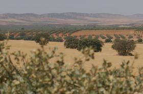 Zemědělci proti těžařům ve Španělsku