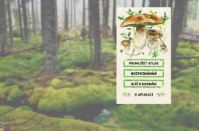 Aplikace Na houby