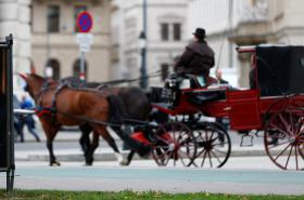 Předvolební Vídeň