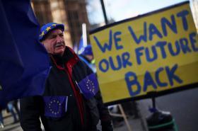Protest odpůrců brexitu v Londýně