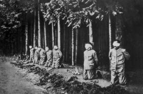 Poprava sedmi vojáků v Novém Boru 29.5.1918