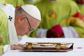 Papežova mše v Dublinu