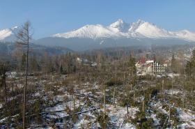 Vichřicí poničené Tatry v roce 2004
