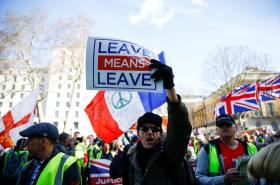 Zastánci brexitu demonstrují na Downing Street