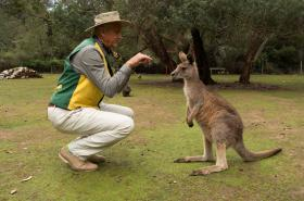 Šumné stopy po Austrálii a Novém Zélandu