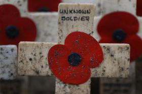 Vlčí máky Field of Remembrance v britském Westminsteru