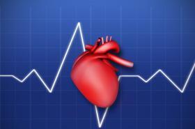 Lidské srdce