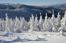 Zimní pohled na Dlouhé stráně