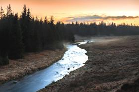 Roklanský potok na Šumavě
