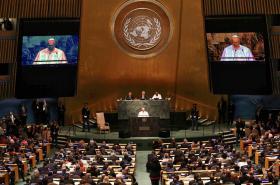 Papež v OSN