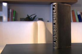 Nová podoba ceny Magnesia Litera