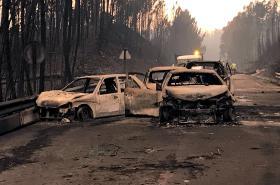 Následky požárů v Portugalsku