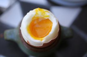 Nebezpečná látka ve vejcích