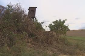 Poničené stromy a keře u Nenkovic