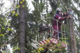Energetici odstraňovali na Tachovsku následky vichřice
