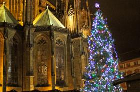 Vánoční strom Pražského hradu u katedrály sv. Víta