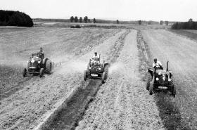 Rozorávání mezí, 1950
