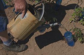 Zahrady se na Zlínsku nesmí zalévat pitnou vodou z veřejného vodovodu