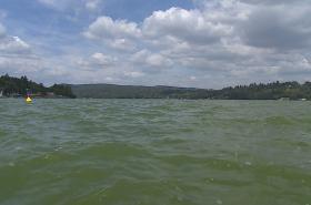 Voda v Brněnské přehradě zezelenala
