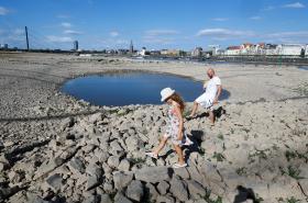 Hladina řeky Rýn v Drážďanech klesla v létě na minimum