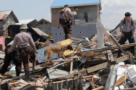 V Indonésii pokračuje pátrání po obětech zemětřesení