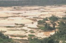 Peruánské lesy zničené težbou zlata