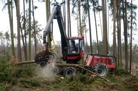 Harvestor likviduje popadané stromy v ZOO Olomouc
