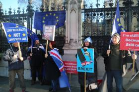 Odpůrci brexitu protestují před čtvrtečním hlasováním před Westminsterským palácem