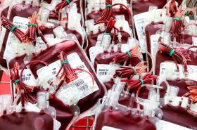Krevní banka