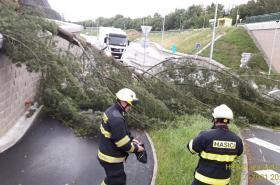 Spadlý strom na silnici v Plzni