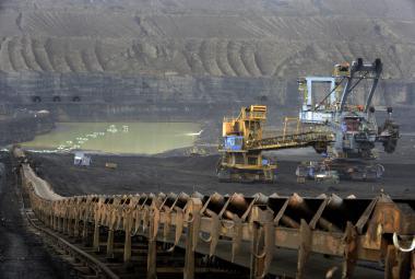 Důl Bílina připravuje těžbu za prolomenými limity, zvířata se musí přestěhovat
