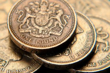 Jednolibrové mince