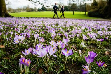 Jaro příští týden vyžene rtuť teploměrů na dvacet stupňů