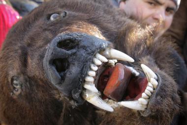 Muž s medvědí hlavou