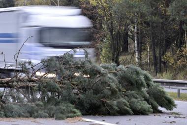 V pátek odpoledne se přižene silný vítr, potrápí hlavně východ Česka
