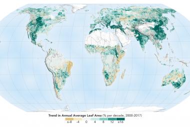 Planeta Země je zelenější než před 20 lety. Vděčí za to hlavně Číně a Indii, prozradila NASA