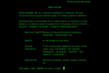 Internet slaví 30 let. Za tu dobu World Wide Web zcela změnil lidstvo