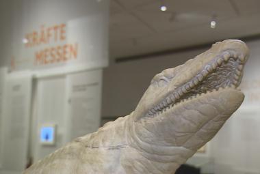 Velká berlínská výstava o bratrech Humboldtových. Ukazuje objevy i temné stránky legendárních vědců