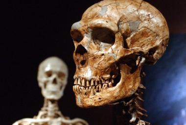 Naši předkové se běžně dožívali 70 let. Umírání ve 40 je jen mýtus, tvrdí nová studie