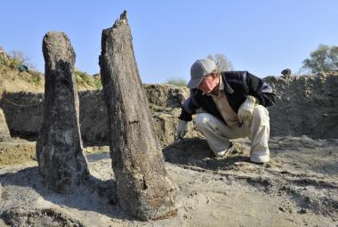 Archeologové koncem roku 2012 odkryli část základů mostu v Mikulčicích