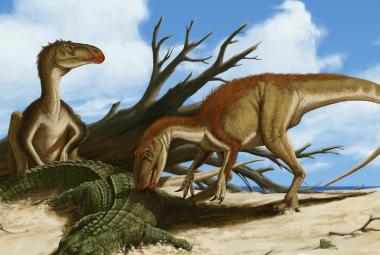 Obři? Ne, Českem kdysi procházeli dinosauři, ukazuje nová kniha