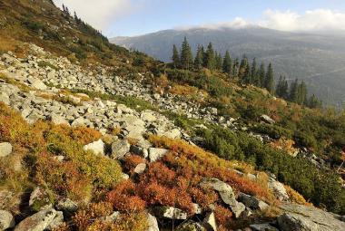 Zeman vetoval pravidla pro národní parky. Novela by potlačila zájmy obyvatel, vzkázal